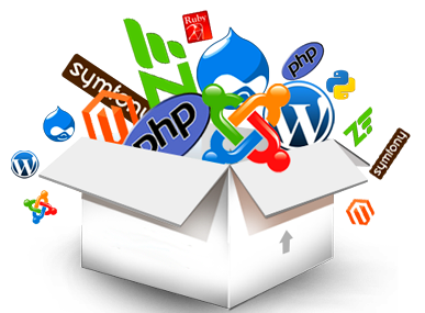 web-solution-content2